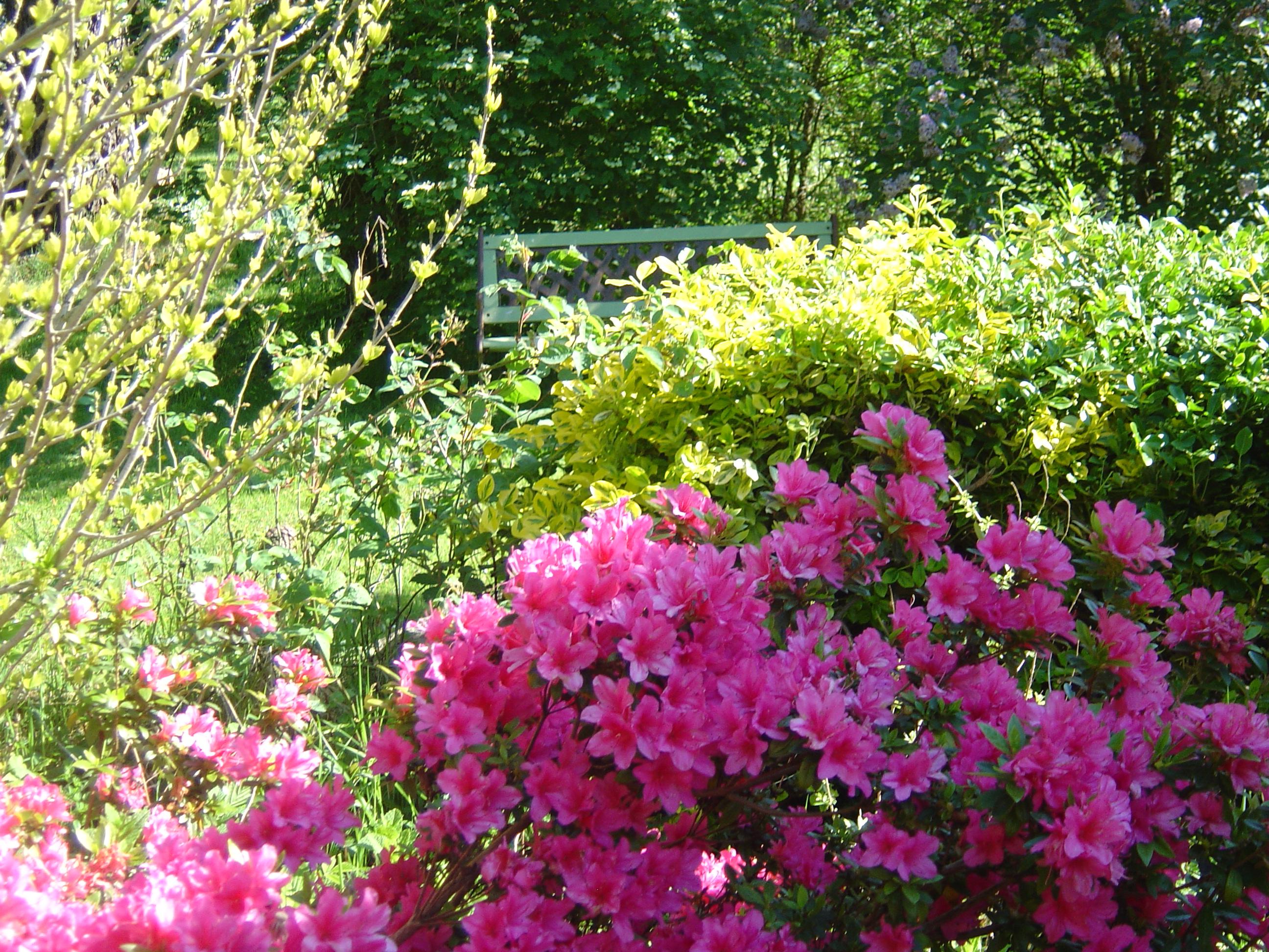 Entrée-Jardin-Mai-2013-044
